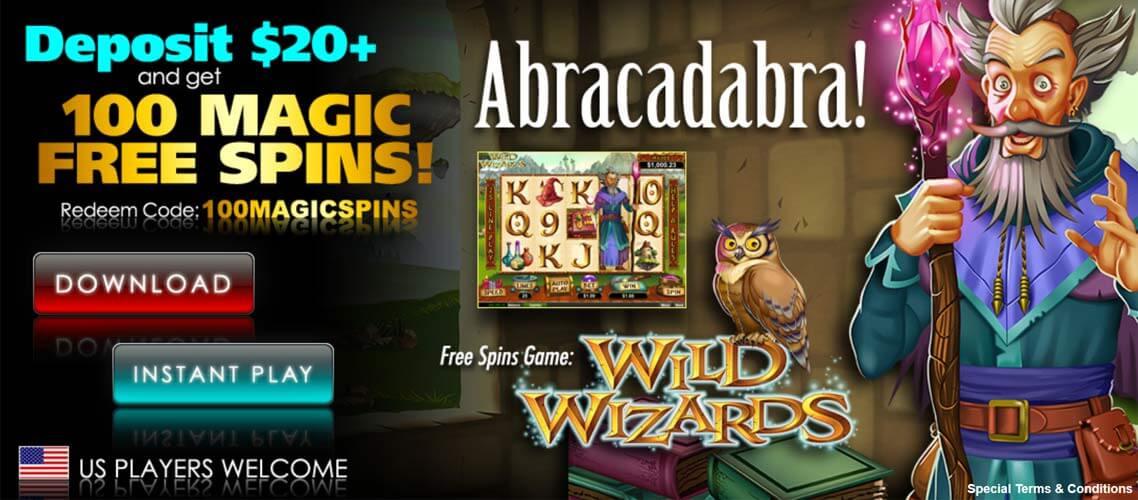 Wild Wizard