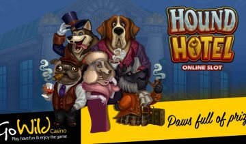 Hound Hotel free spins round comes with up to 2933 times your line bet