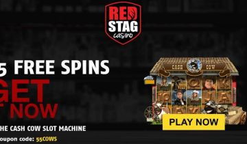 Win $1000 in the Pad Thai Slots Tournament & grab the 55 Free Spins